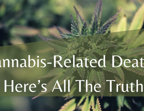 Cannabis-Related Deaths: Here's All The Truth