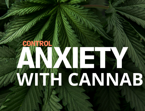 Cannabis For Anxiety: Here's All You Need to Know